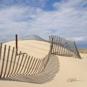 Dune Fence Trivet