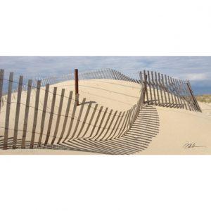 Dune Fence Key/Leash Hanger