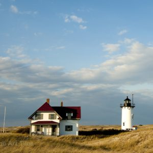 Race Point Light Tile