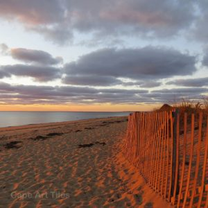 Red Dune Fence Coasters