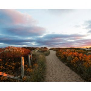 Autumn Dune Path Cutting Board