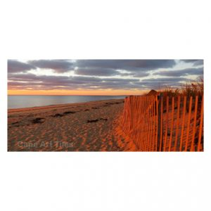Dune Fence Key Rack
