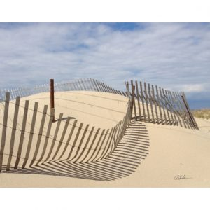 Dune Fence Cutting Board