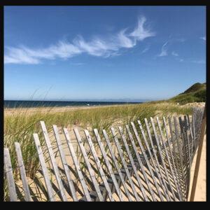 Head of the Meadow Beach Trivet